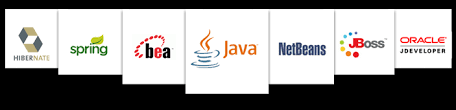 java j2ee application development company custom java web