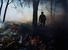 Wildfire Ft Drake by Photobookstore Co Uk Photobookstore Twitter