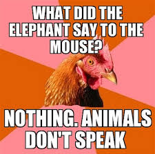 Chicken Meme Jokes - 30 most funniest chicken meme pictures that will make you laugh