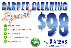 carpet cleaning cape coral fl tile grout upholstery cleaning