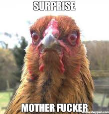 Suprise Mother Fucker Meme - surprise mother fucker meme rage chicken 44610 memeshappen