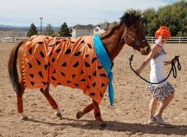 Halloween Costumes Horses Sale 61 Halloween Country Style Images Halloween