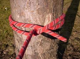 Indian Flag Hoisting Knot Clove Hitch Wikipedia