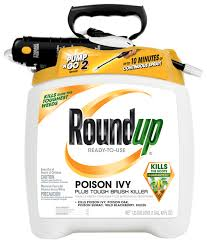 roundup ready to use poison ivy plus tough brush killer in the