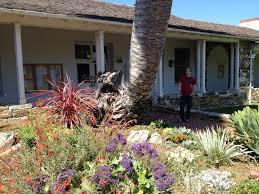 native plant nursery santa cruz visit to dig gardens nursery santa cruz ca digging bliss