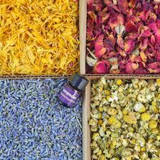 bulk flowers bulk flowers bmaker us