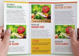 nutrition brochure template nutrition brochure template fieldstation co