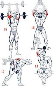 Muscles Used During Bench Press Shoulder Musculation Buscar Con Google More Exercise