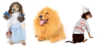 Halloween Costumes Dogs Cutest Puppy Costumes 2011 Ruff Draft Adorable Pet Costumes Puppies U0026 Kittens