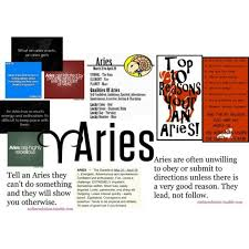 28 best aries images on pinterest signs zodiac and aries