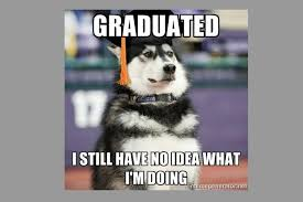 Cute Animals Memes - animal memes only college students will get cuteness