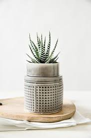Ceramic Succulent Planter by Ceramic Planter Modern Planter Black And White Planter Ceramic
