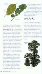 collins british tree guide owen johnson david more nhbs shop