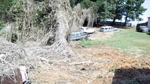 auto junkyard birmingham al 100 classic cars including 1967 camaro buried in kudzu youtube