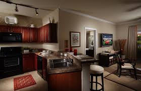 luxury apartments in tampa cool home design unique to luxury