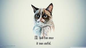 Image 9 Best Grumpy Cat - grumpy cat wallpaper qige87 com