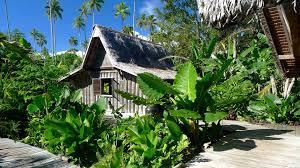 paradise found on ratua island vanuatu wandermelon