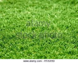 astroturf artificial lawn or grass astro turf stock photo royalty free