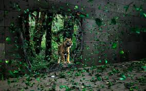 universal glow wallpapers green tiger wallpapers group 70