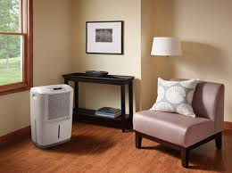 dehumidifiers for basement rooms u0026 damp apartments apartment therapy