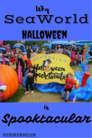 seaworld halloween why a seaworld halloween is spooktacular the weekend the o