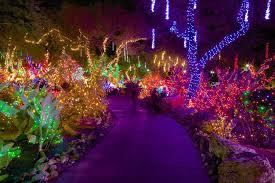 ethel m chocolate factory las vegas holiday lights ethel m chocolates holiday cactus garden las vegas attractions