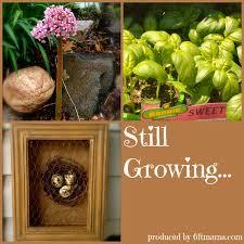 still growing a weekly gardening podcast listen via stitcher