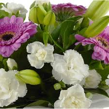 flowers to kangaroo point flowers and gifts delivery today
