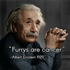 Albert Einstein Meme - albert einstein knows meme by simdor memedroid