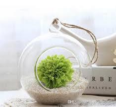 glass terrarium kit indoor garden succulent planter garden decor