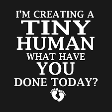 What Have You Done Meme - i am vrating a tiny human what have you done today meme t shirts