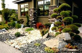 Desert Landscape Ideas by Small Front Yard Desert Landscaping Ideas Large Size Desert
