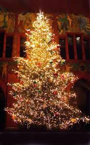 most popular christmas tree lights best christmas trees christmas day 25