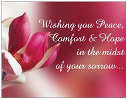 Sympathy Flowers Message - petals for pax petals for peace send a card