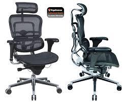 Great Desk Chairs Gorgeous Ergonomic Work Chair Ergonomic Office Chairs Best