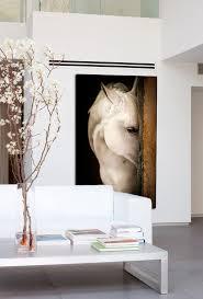Photography Home Decor Arabians Room Art Cabin And Interiors