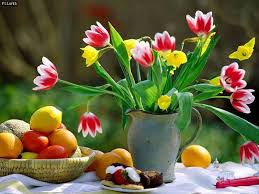 flowers and fruits flowers and fruits wallpaper february interesting