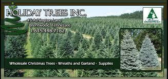 wholesale trees trees inc