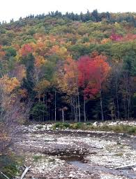 New England Foliage Map by New England Road Trip U2013 Week Two Going Mobile