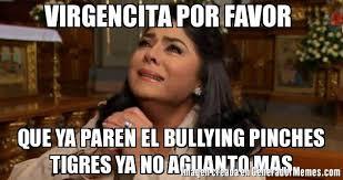No Al Bullying Memes - virgencita por favor que ya paren el bullying pinches tigres ya no