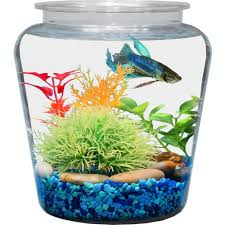 fish bowl centerpieces vases interesting clear vase centerpiece ideas wonderful
