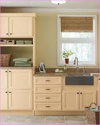 Martha Stewart Bathrooms Martha Stewart Kitchen Cabinets Purestyle Home Design Ideas