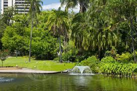 Botanic Gardens Brisbane City Qb0124 Pond Botanical Gardens Brisbane Qld Owen Wilson Photography