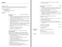 Chronological Event Planner Resume Template by Cover Letter Digital Media Planner Resume Digital Media Planner