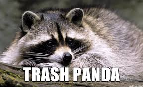 Racoon Meme - raccoon better names for things know your meme