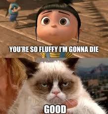 Grumpy Cat Meme Good - grumpy cat meme despicable me clevver
