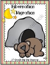 129 best hibernation unit images on pinterest animals that