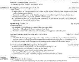 free writing resume sle technical resume writing services nj for cool ideas best writers
