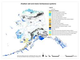 Alaska On The Map Alaskan Wet Herbaceous Systems