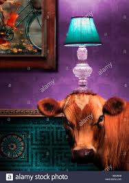 Wohnzimmer Mit Lampen Stock Vektorgrafiken Und Illustrationen Alamy